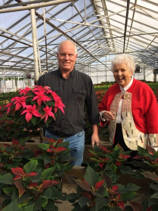 The friendly grower gives my aunt advice: plant the whole pot in the spring, dig it in the fall, trim the roots and you can enjoy this beautiful plant for another year.